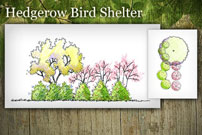 Hedgerow Bird Shelter